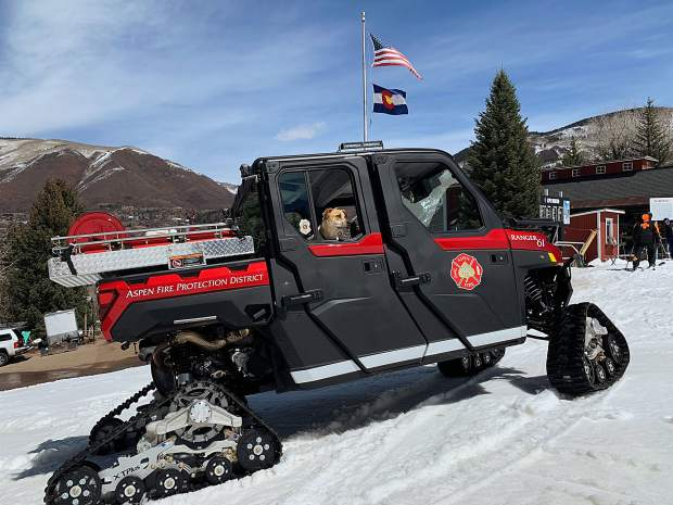 Aspen Fire Chief Rick Balentine's dog Etta James hangs in the backseat of the department's new off-road, quick-response vehicle.