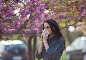 Sniffling and sneezing? You are not alone: Allergy season is here