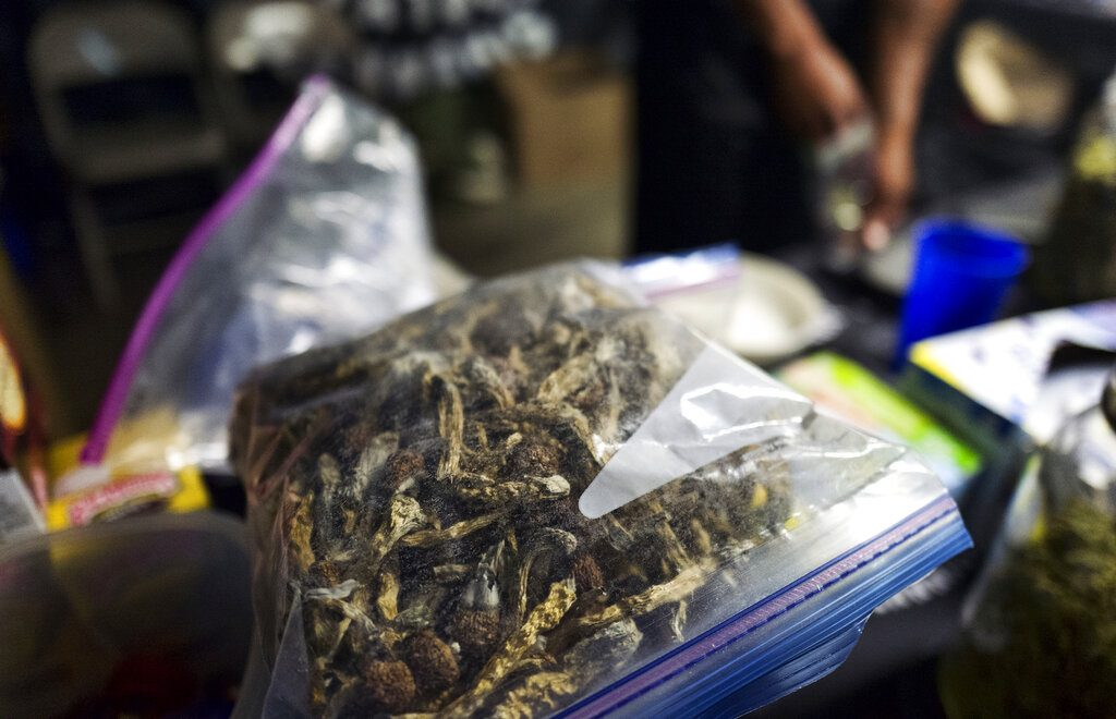 Denver becomes the first US city to decriminalize 'magic mushrooms'