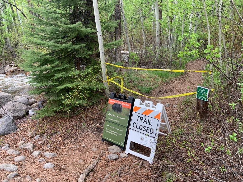 Hunter Creek Valley trail closed near aspen after bear attack