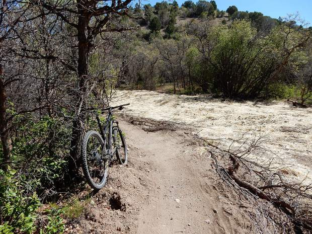 A 50-foot wide area was cleared of vegetation beside the Lower Monte Carlo Trail when an irrigation ditch was replaced with an underground pipe. Some observers wonder why the zone of devastation had to be so wide.