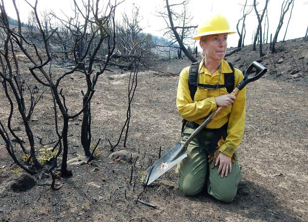 Beth Anderson, a soil scientist with the U.S. Forest Service, showed how suckers were already shooting up from oak brush roots within the Lake Christine Fire shortly after the fire struck last July.