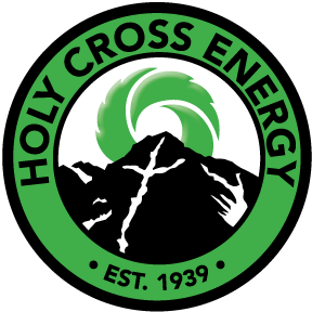 One director's seat contested in Holy Cross Energy election