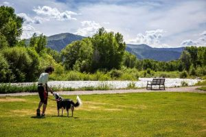 Dogs think they don't need no stinking leashes; Basalt officials think otherwise
