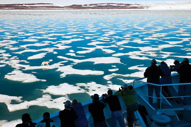 Observers check out a polar bear on pack ice, Svalbard Archipelago, Norway. Basalt teacher Leticia Guzman Ingram will visit the archipelago next week.