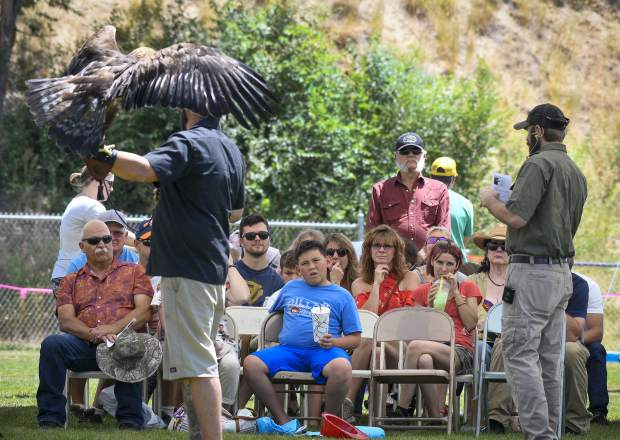 Chadd Drott, right, founder of Chadd's Walking With Wildlife talks about the Golden Eagle with patrons during Saturday's Raptor Fest at Silt HeyDays in Stoney Ridge Park.