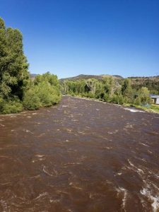 On the Fly column: The bright side of high runoff
