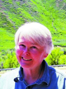 Sextiped Valley column: A future for pets?