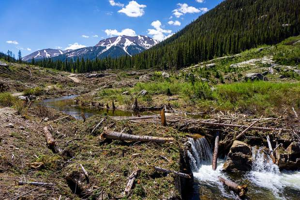 Logs and limbs from trees flattened by avalanches in March clog Lincoln Creek. Foresters are concerned that the debris will be flushed by runoff into culverts and get snagged at bridge pilings, potentially causing flooding.