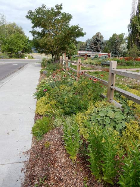 The town govenment completed the sidewalk and planted additional flowers this year along the southern edge of the edible garden.