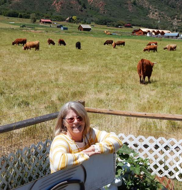 American Highlander cows graze in pasture surrounding Marti Barbour's backyard in Emma.