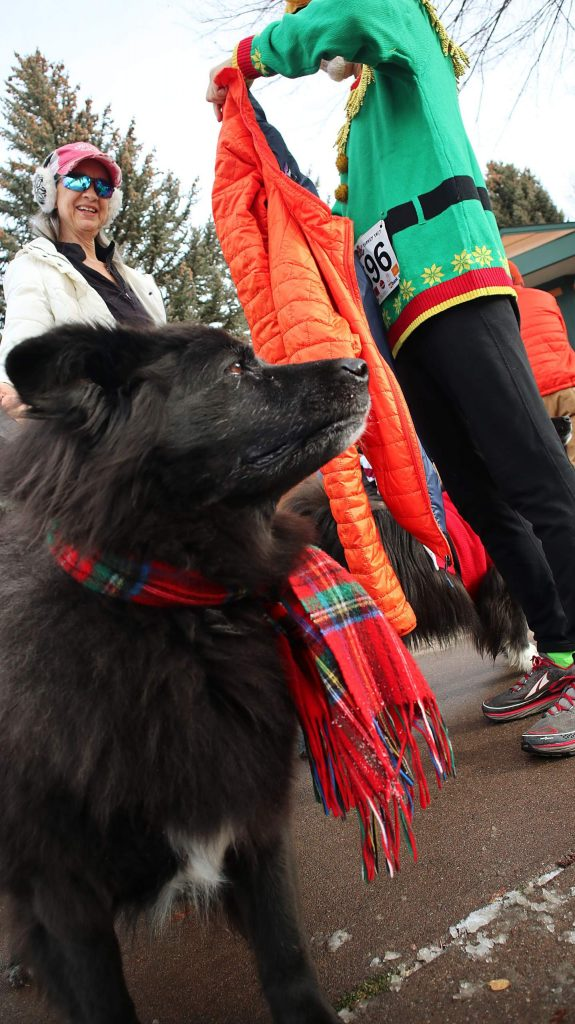 Wearing a Tartan scarf, Ripley the dog surveys the crowd while Rena Gurule and Kevin Mullins prepare for the 33rd annual Turkey Day 5K on Thursday.