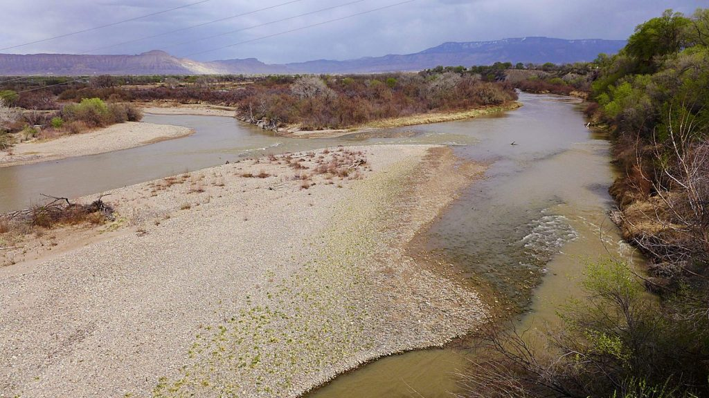 The 15-mile reach of the Colorado River near 19 Road in Grand Junction is home to four species of endangered fish. Garfield County is leasing some of the water it owns in Ruedi Reservoir to help bolster flows during late summer and early fall.