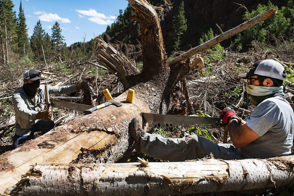 Mike Cooperstein, left, and Jason Konigsberg saw into a tree in avalanche debris while working up East Snowmass Trail for the Colorado Avalanche Information Center on Tuesday, July 7, 2020. (Kelsey Brunner/The Aspen Times)
