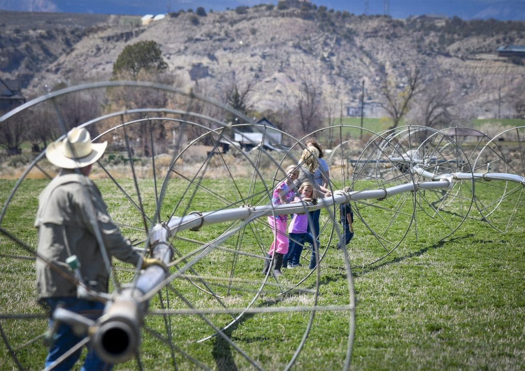 With the help of the family Audie Williams, along with Kylie, Peyton, Amanda, Kaye and Owen move a section wheel line that broke off during a wind storm over the winter on Silt Mesa. The Williams family took advantage of the mild spring weather to make repairs as irrigation season nears in western Colorado.
