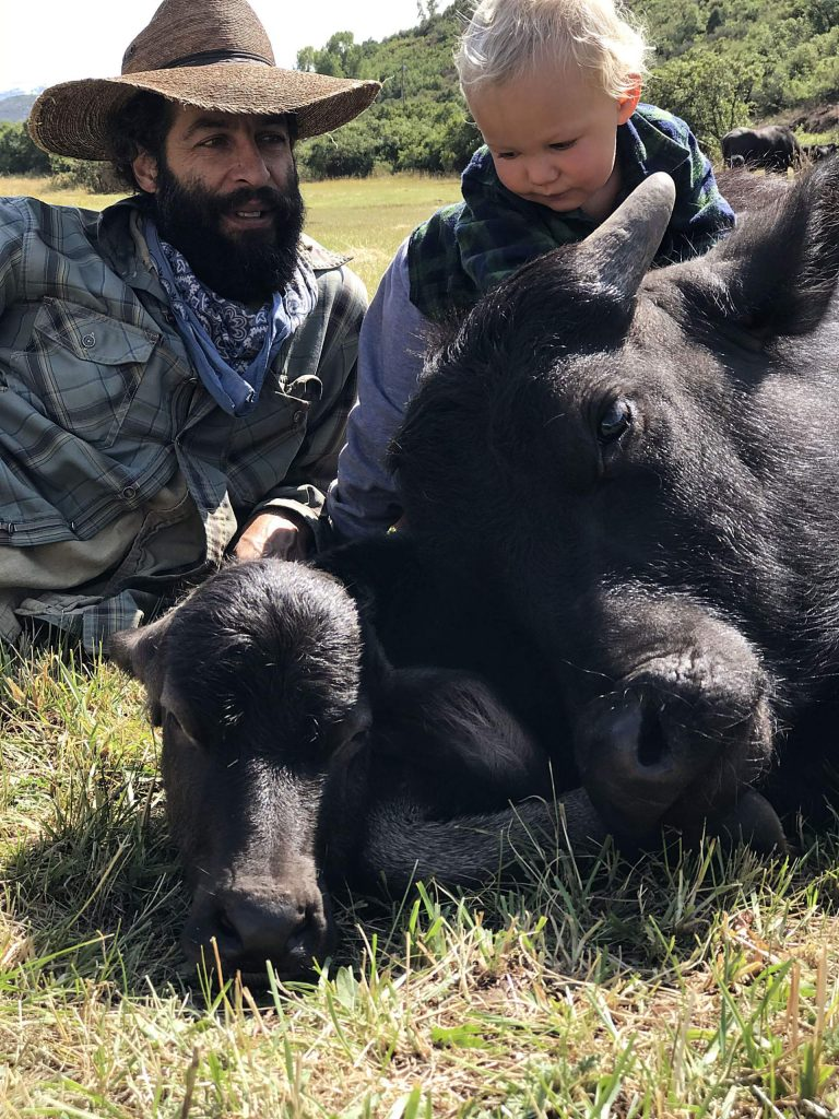 The water buffalo calf, center, was born in Tuesday's snowstorm and named Tormenta. Jose and Wekta Miranda check out the calf on Wednesday. Jose is owner of Rocking TT Bar Water Buffalo Dairy.