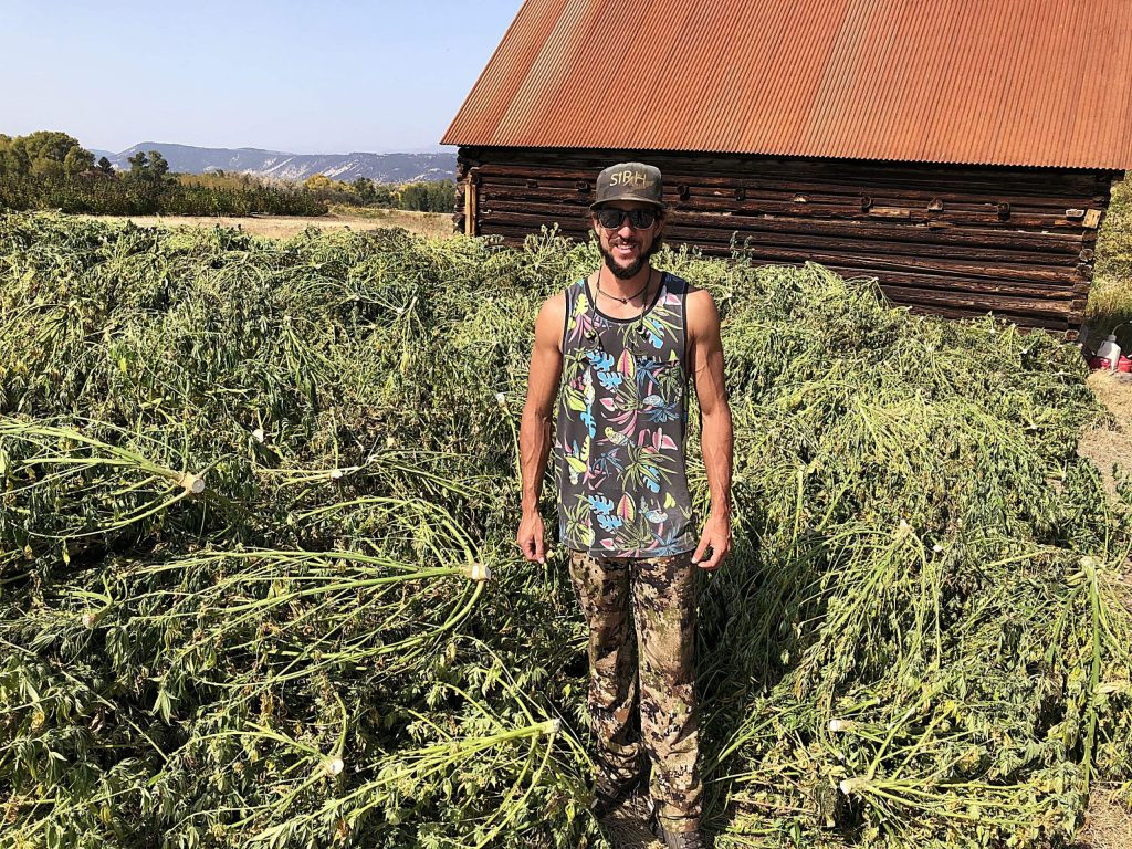 Raphael Fasi stands beside a pile of hemp plants drying at his Emma farm. The plants will be sold for extraction of cannabinoids for use in various products.